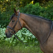 Salamo Comfort Bridle (brown)