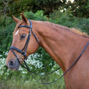 Salamo Original Comfort Bridle (black) copy