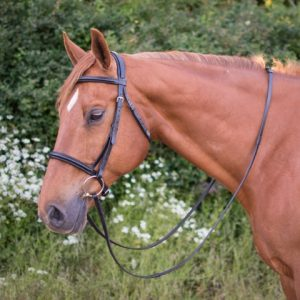 Salamo Detachbale Flash Comfort Bridle