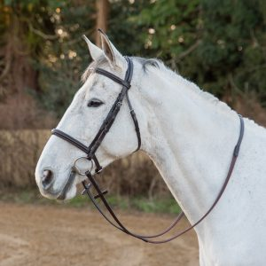 Salamo detachaable flash comfort bridle (flash removed)