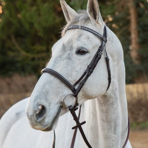 Salamo bling browband on detachable flash bridle (no flash)