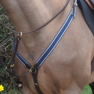 salamo v-check breastplate